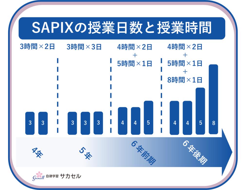SAPIXの授業日数と授業時間のまとめ